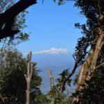 Helping on organic farm in the Himalayas