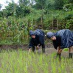 Organic Farming Volunteer Opportunities Nepal