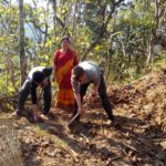 Organic farm volunteer Nepal