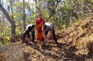 Organic farm volunteer programs Nepal