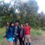 Sustainable farming internships Nepal
