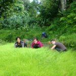 Volunteer in Organic Farming Abroad