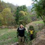 Volunteer in an Organic Farm in Nepal