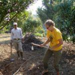 Worldwide Opportunities on Organic Farm Nepal