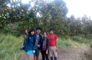 Agriculture volunteer work abroad on an organic farm